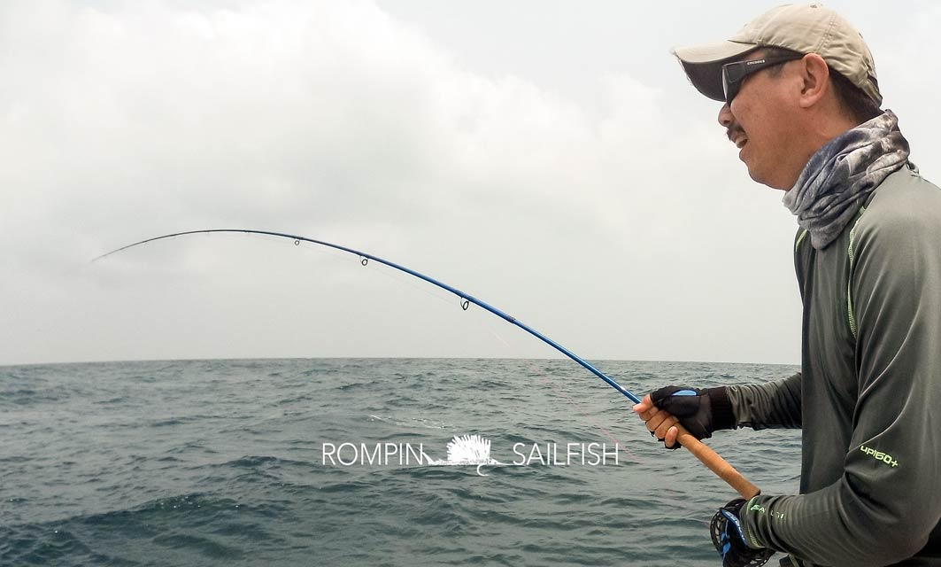 fly-fishing-rompin-sailfish_150823_1556