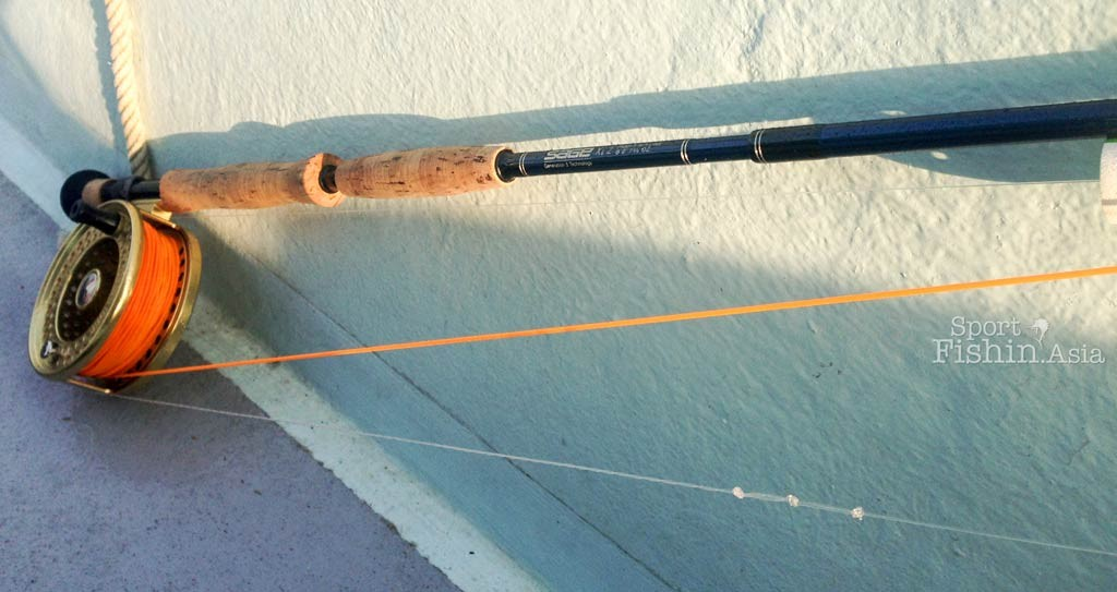 sage-rod-thomas-and-thomas-islander-reel-fly-fishing-sailfish-rompin