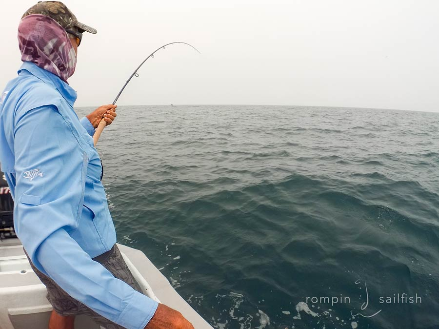sailfish-fly-fishing-rompin-tim_151020_7647