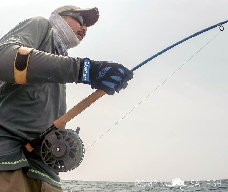 wade-caranx-sage-motive-fly-fishing-rompin-sailfish_150823_1579