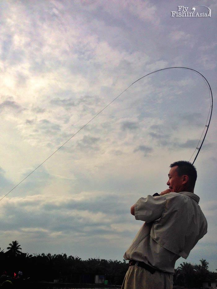 fly-fishing-jugra-pond-banting-malaysia-20140710-(2)-wirianto