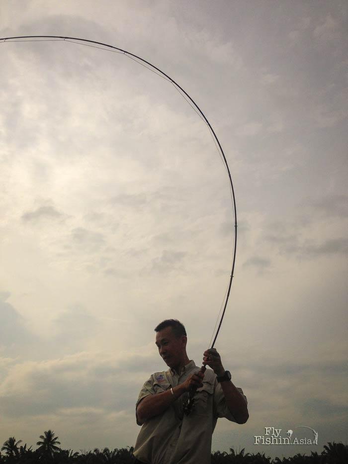 fly-fishing-jugra-pond-banting-malaysia-20140710-wirianto