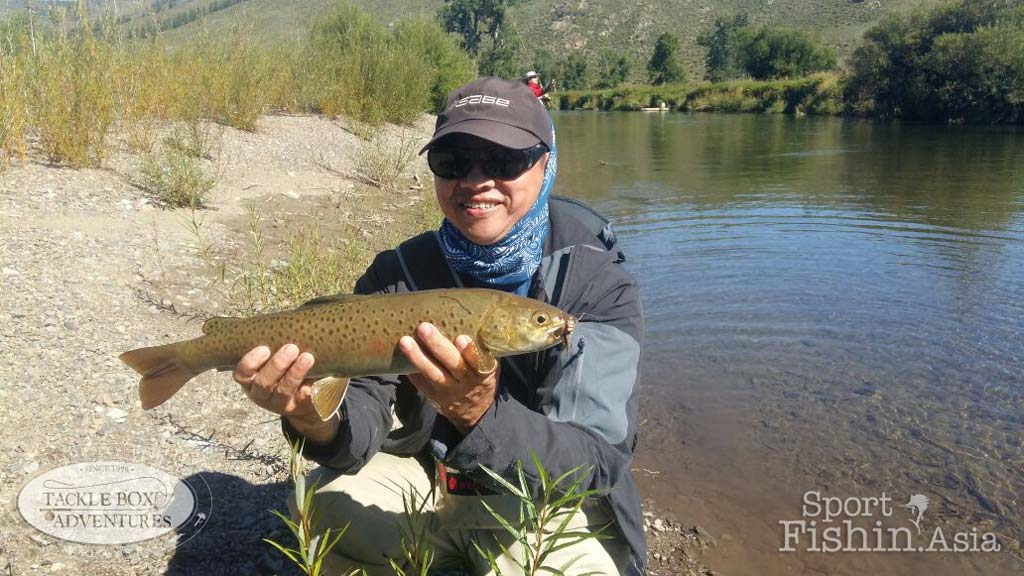 fly-fishing-mongolia-amur-trout-taimen-31082016-(7)