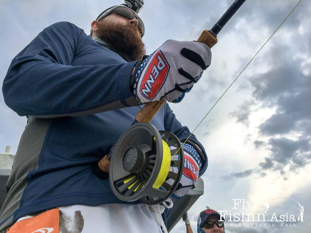 Rompin Sailfish on Fly – Martyn White and David Carr Trip Report