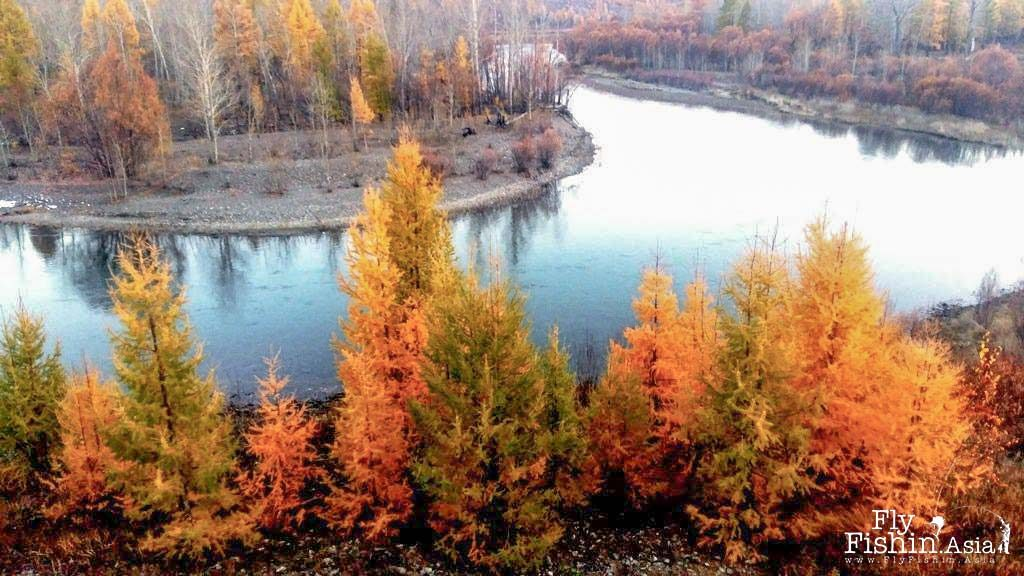 Taimen Fishing: Ty's Fall Escapade To Mongolia