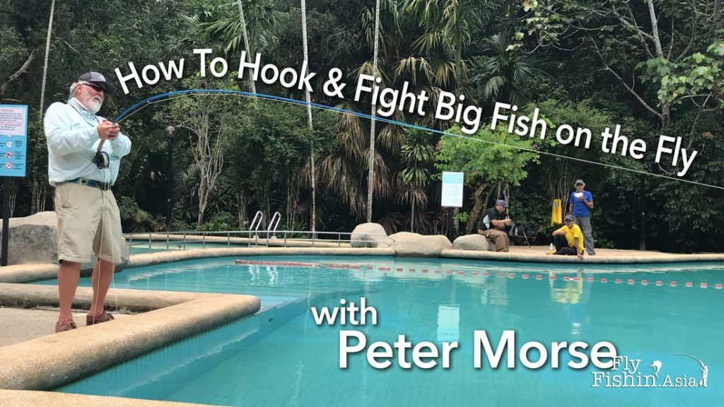 How to hook and fight big fish on the fly | Video with Peter Morse