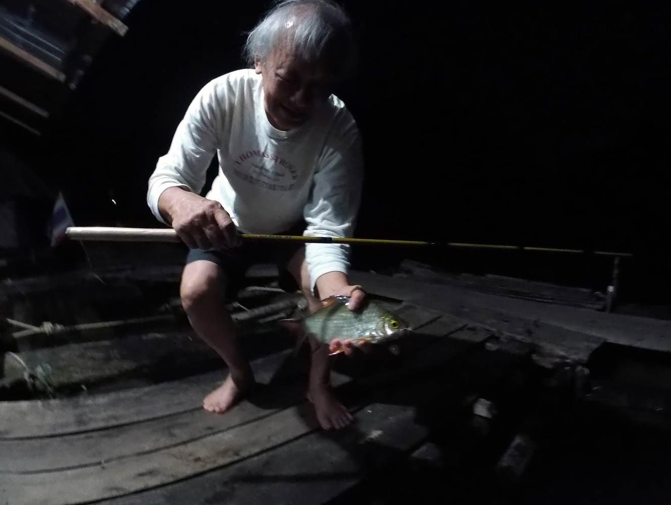 Tenkara fishing for tinfoil barb