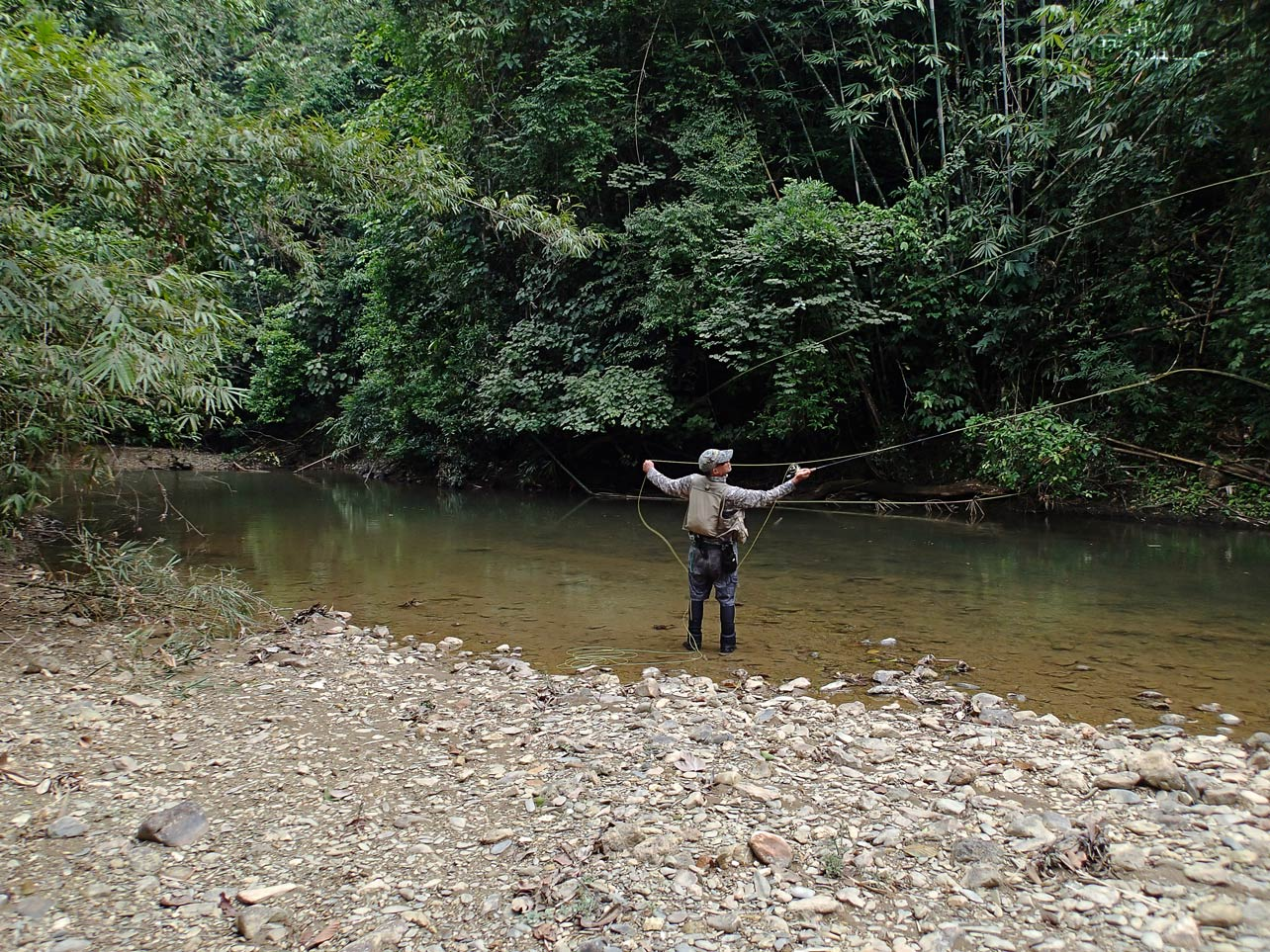 Fly fishing in the jungle