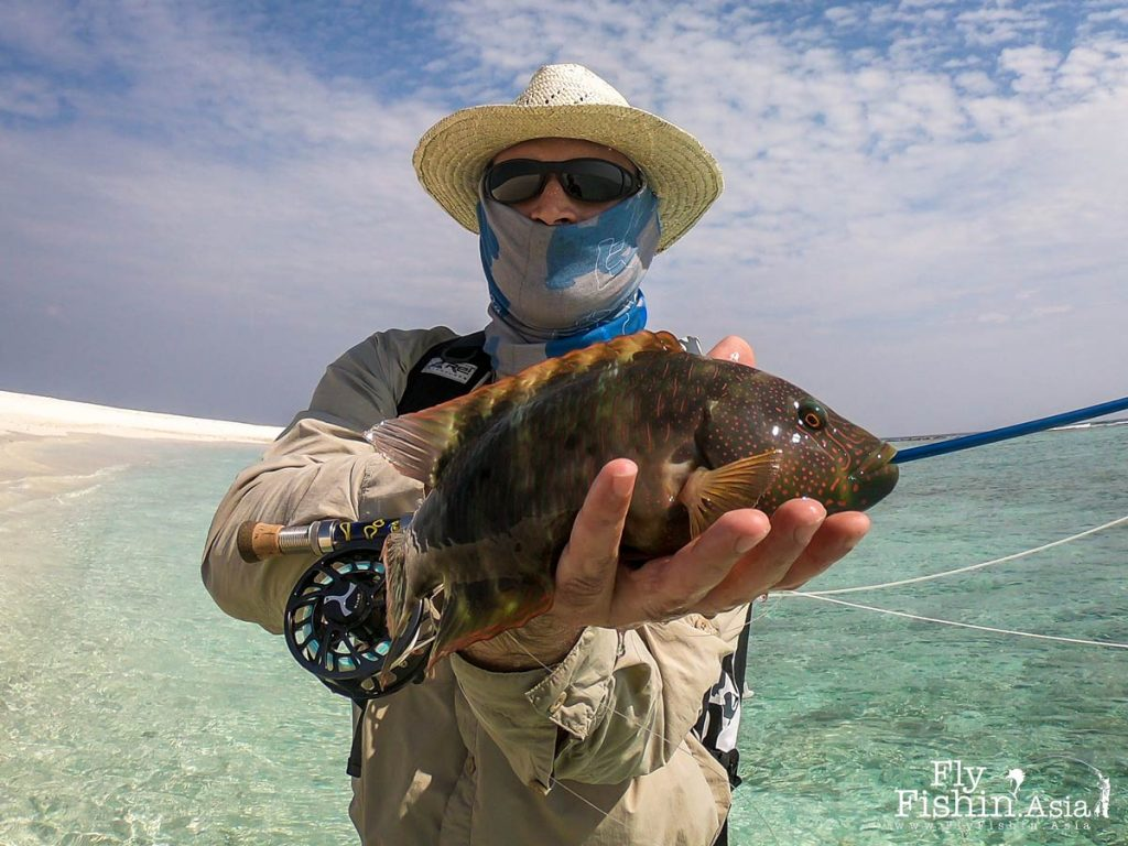 Stefan with a small wrasse