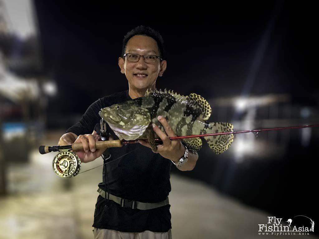 A pesky grouper