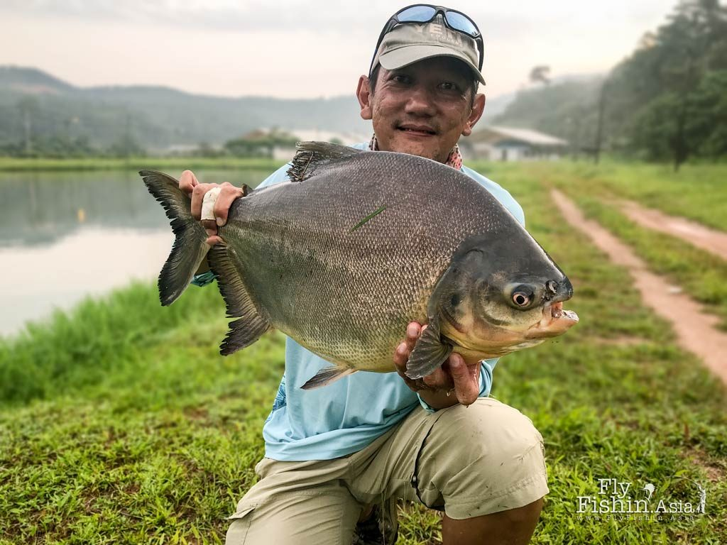 JW posing with a decent size pacu fish
